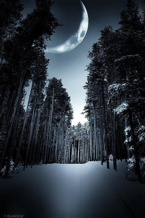 Moonlight Hike (Casper Mtn)