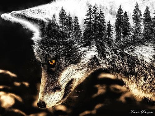 Cunning & Wild Fox