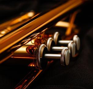 Close up of trumpet valves..jpg