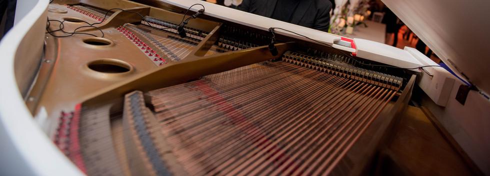 הפסנתרן - פסנתר כנף לבן לקבלת פנים