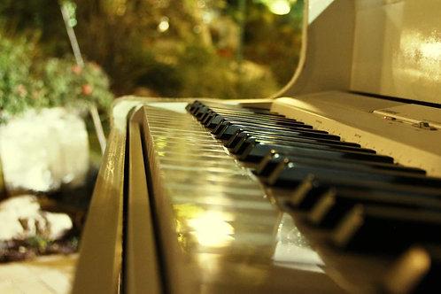 The Golden Piano - Ofer Hamerman