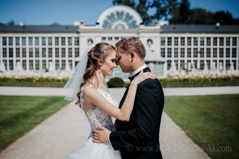 sesja ślubna w pomarańczarni, sesja poślubna w łazienkach, sesja ślubna w ogrodzie, para młoda w parku, sesja zdjęciowa w parku, sesja w oranżerii, sesja ślubna w warszawie, sesja ślubna na świeżym powietrzu