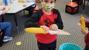 Corn and Popcorn Exploration