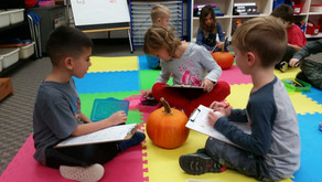 Pumpkins...Collecting Data and Cleaning Them Out