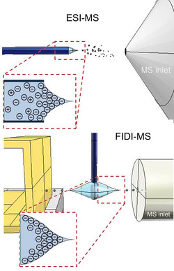 ESI vs. FIDI for interfacial RXN