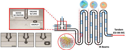 Microfluidics Droplet Generator