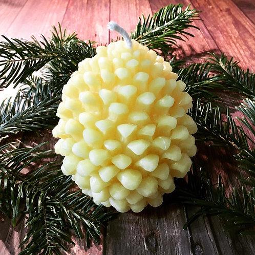 Large Pinecone