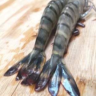 crevettes-black-qwehli-3.jpg