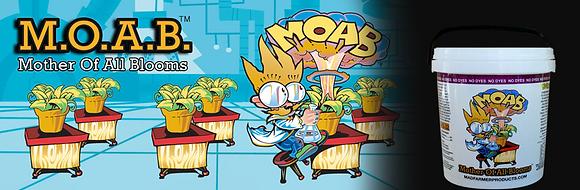 MOAB 100 GRAMS