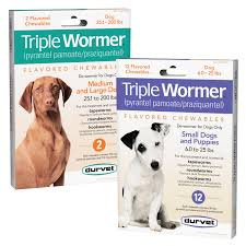 Triple Wormer Chewables