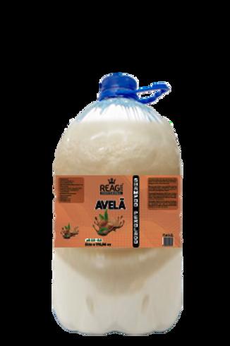 Shampoo Avelã 5Litros
