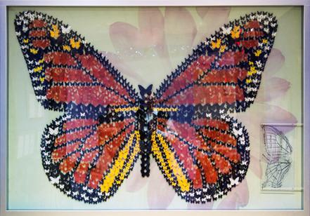 Butterfly Wayfinding Art