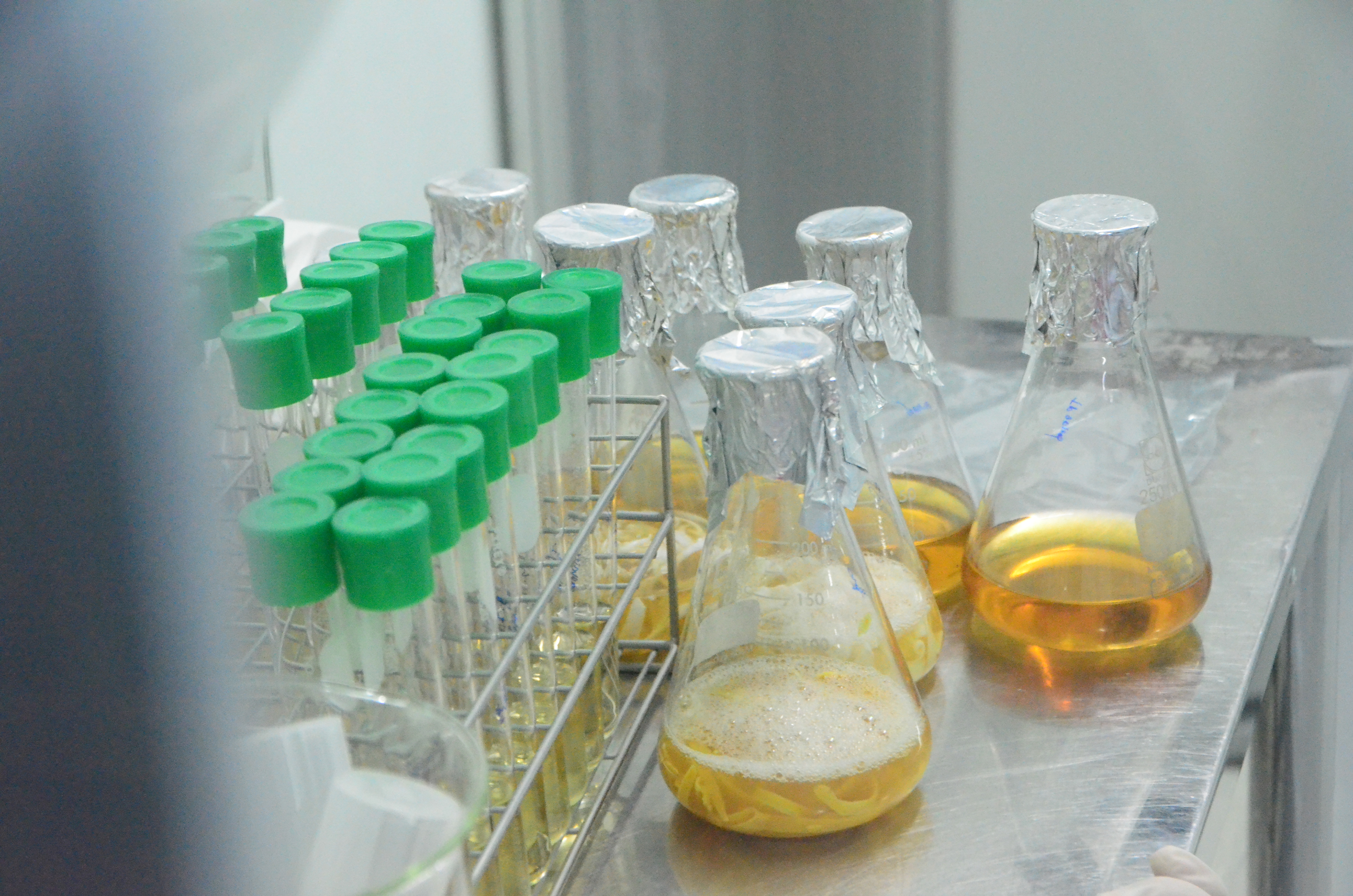 2.原料の培養検査