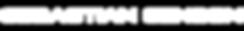 SS Wix Logo.png