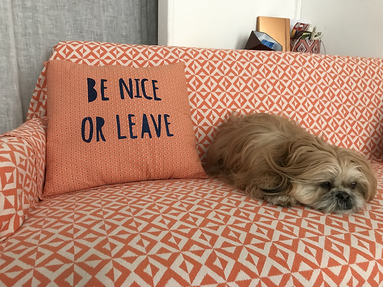 Coussin - Be Nice or Leave