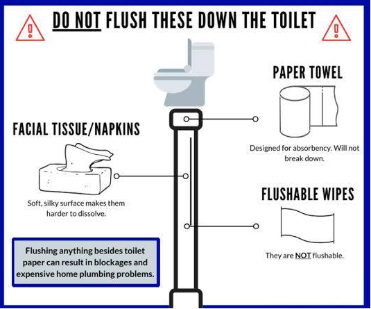 dont flush.png