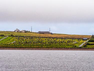 Stornoway, September 2019
