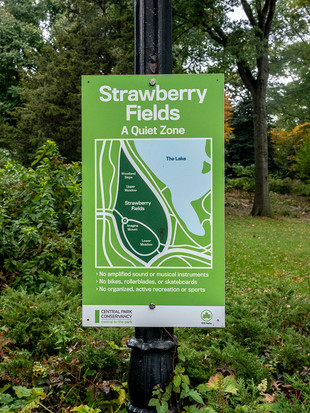 Strawberry Fields, October 2018