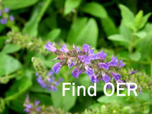 Find OER