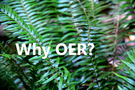 Why OER?