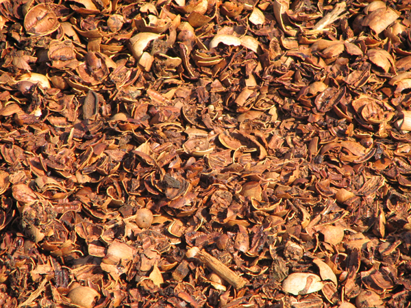 Mulch - Pecan Nut Shell