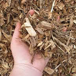 Gum Woodchip