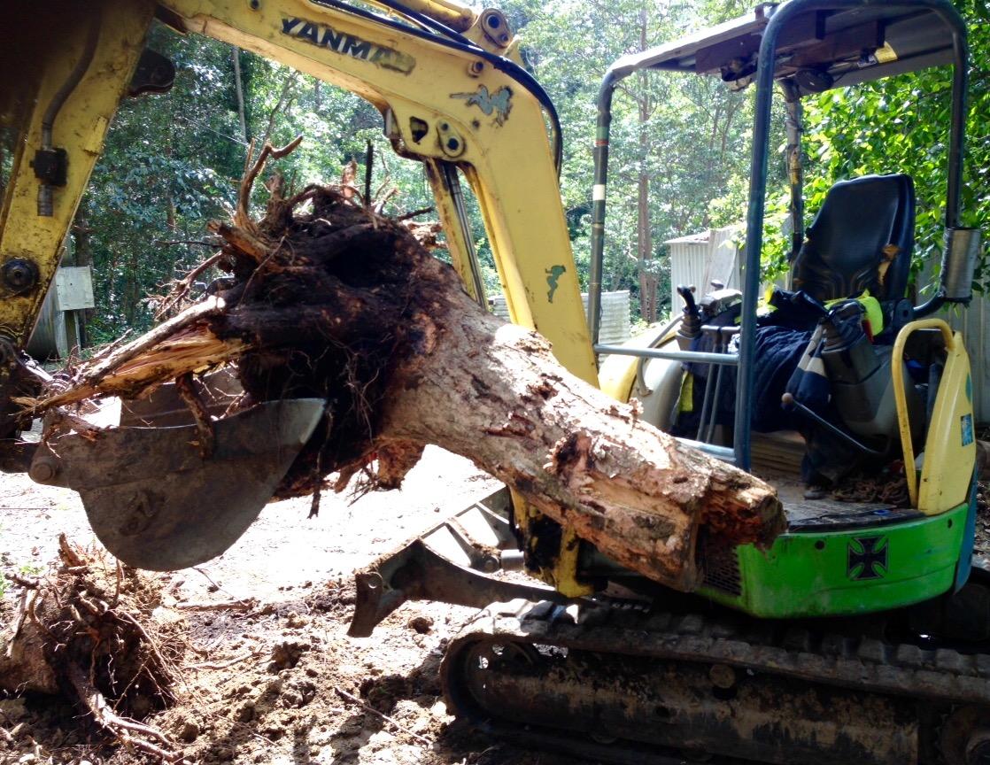 excavator and bobcat hire