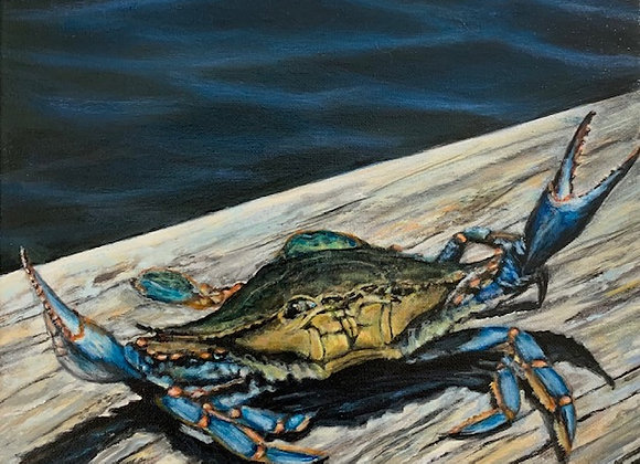 Blue Crab on pier