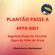 ARTE PPA 0001.png