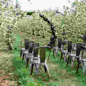 Mitten-weddings-and-events-detroit-wedding-planner