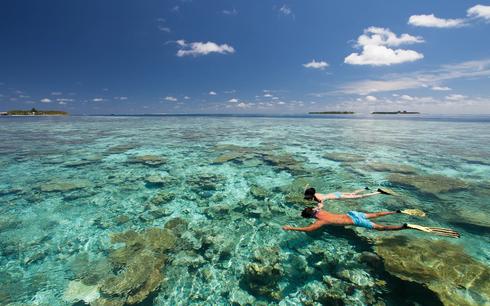 vilamendhoo-island-resort-maldives-snork