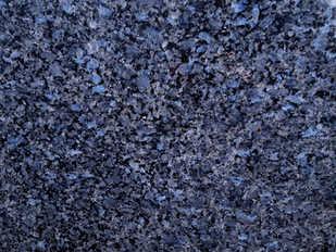 Labrador  Blu