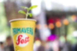 Primavera Fest - Entretenimiento Sostenible