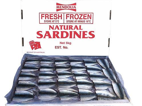 Australian Sardines Fillets 5kg
