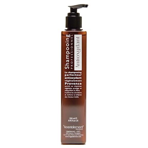 Antioxidant Shampoo (for colored hair)