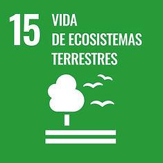 800px-Sustainable_Development_Goal-es-03