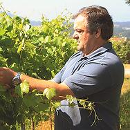 Anselmo_Mendes - vinho verde.jpg