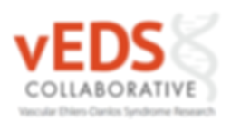 vEDS Collaborative Logo.png
