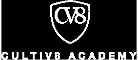 CV8.png