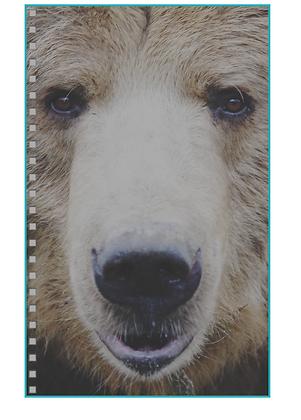 Smiling Bear Notebook