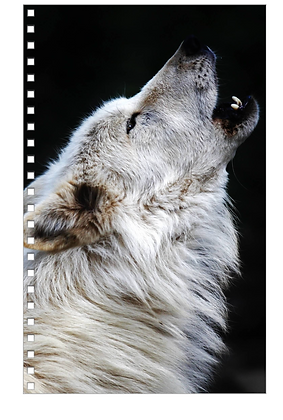 Howling Wolf Note Book