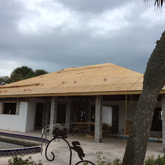 Major renovation -roof framing.JPG