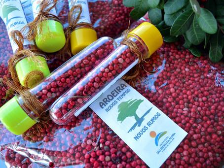 INEA entrega a primeira Autorização Ambiental para o Manejo Sustentável da Aroeira no Estado