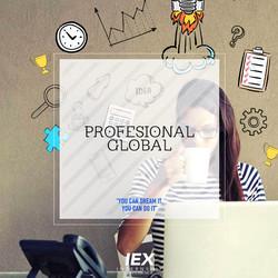 IEX PROFESIONAL GLOBAL