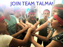 TALMA - A Team Effort