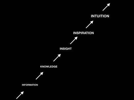 Aiguiser son intuition pour tirer le meilleur des données