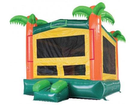 Tropical Bounce