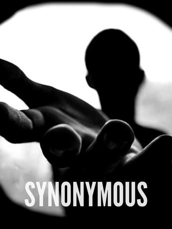 Synonymous - Docu-Series