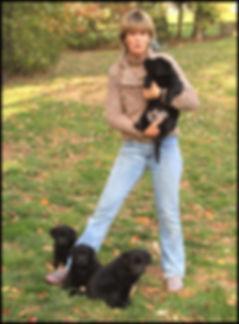 Copy of puppy.jpg web.jpg