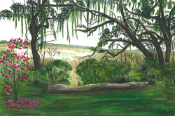 Sharon Hunt - The timeless beauty of Old Florida